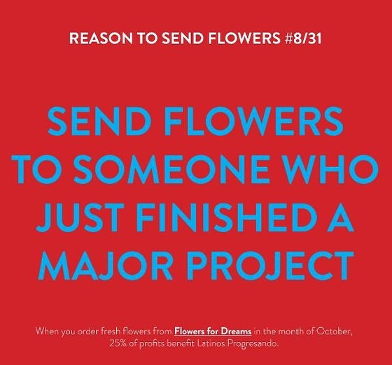 Celebrate someone who just finished a major project by sending a fall bouquet from @flowersfordreams . Flowers for Dreams will be donating 25% of their October profits to Latinos Progresando!